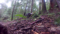 North Shore trails - Old and New, including...