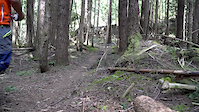 Cortez Planks in Squamish BC