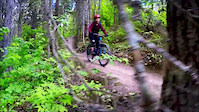 Trail Ride - Ditch Pig
