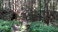 Burke Mountain pre-dodger 2
