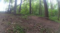 Aucincruive Trail