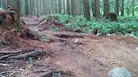 Tyler gorz trail sender