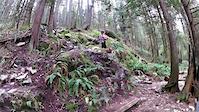 Mt. Seymour - Empress