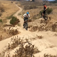 All the Kooks Hitting the Whoops