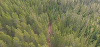 Snake Charmer Trail - BigSky
