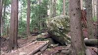 Mt Seymour - CBC Drop