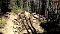 Lower Long Trail