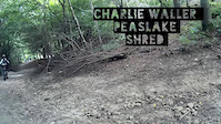 Charlie Waller Peaslake Shred