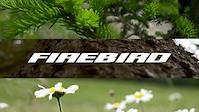 2017 Pivot Firebird