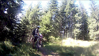 verbier_woods_switchbacks