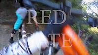 Red Gate run