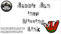 Rabbit Run Into Missing Link - Black Mountains...