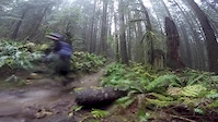 Wet Wednesday in Squamish, BC