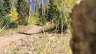 mid trail feature