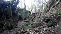 Criusing down Farropo Trail