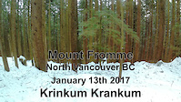 A wintery blast down Crinkum Crankum - snowy fun