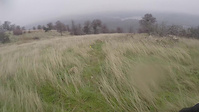 Exchequer Gnarnia Trail