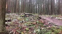 Eagle/thorn hill mountain.