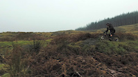 A rip around Grizedale