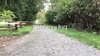 2016 Cream Puff