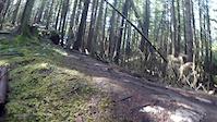 Squamish Leave of Absence & Squamish Rocks