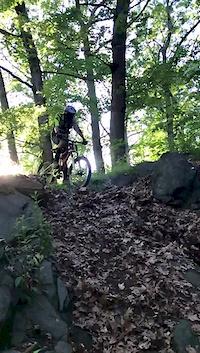 vanny horse trail wall