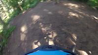 stub stewart park