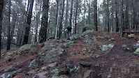 Rock garden on Touching Cloth, Majura Pines