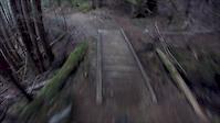 packhore trail 7/29/17