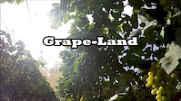 Grape-Land