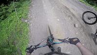 Neilson trail
