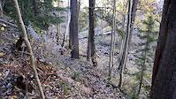 New Sawmill trail