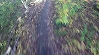 Stinky Girl Trail