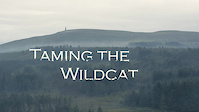 Taming the Wildcat