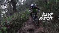 Dave Habicht - Channel 10
