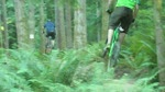 Pip & Friends riding Big Tree Line @ Duthie