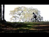 Prospect Hill - Daniel Morgan