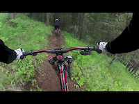 Scott and Barrys: Day in the Woods