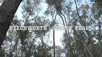 Secret Track | Beechworth