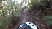 Redwoods Downhill Track + Jump Line