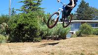 Short trail in my yard