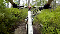 Fight Trail Over The Bars