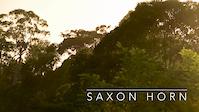 Saxon Horn