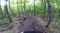 Bull Trail Clip