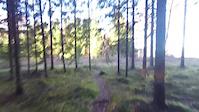 26.10.2016 trip Prestegårsskogen- riding with...
