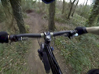 Danbury trails