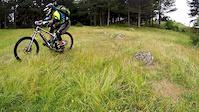 Prosenik - Rocky Trail