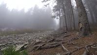 Skrzyczne - Mountain biking in Silesian Beskid