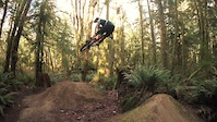 Big Tree - Duthie Hill