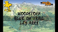 Woodstock Blue DH Trail - Les Arc - French Alps